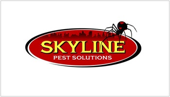 Skyline BusinessCard 350_200
